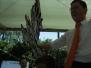Jungschützenfest 2008 Koenig Dominik
